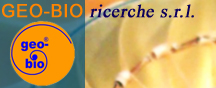Logo Geo-Bio richerche